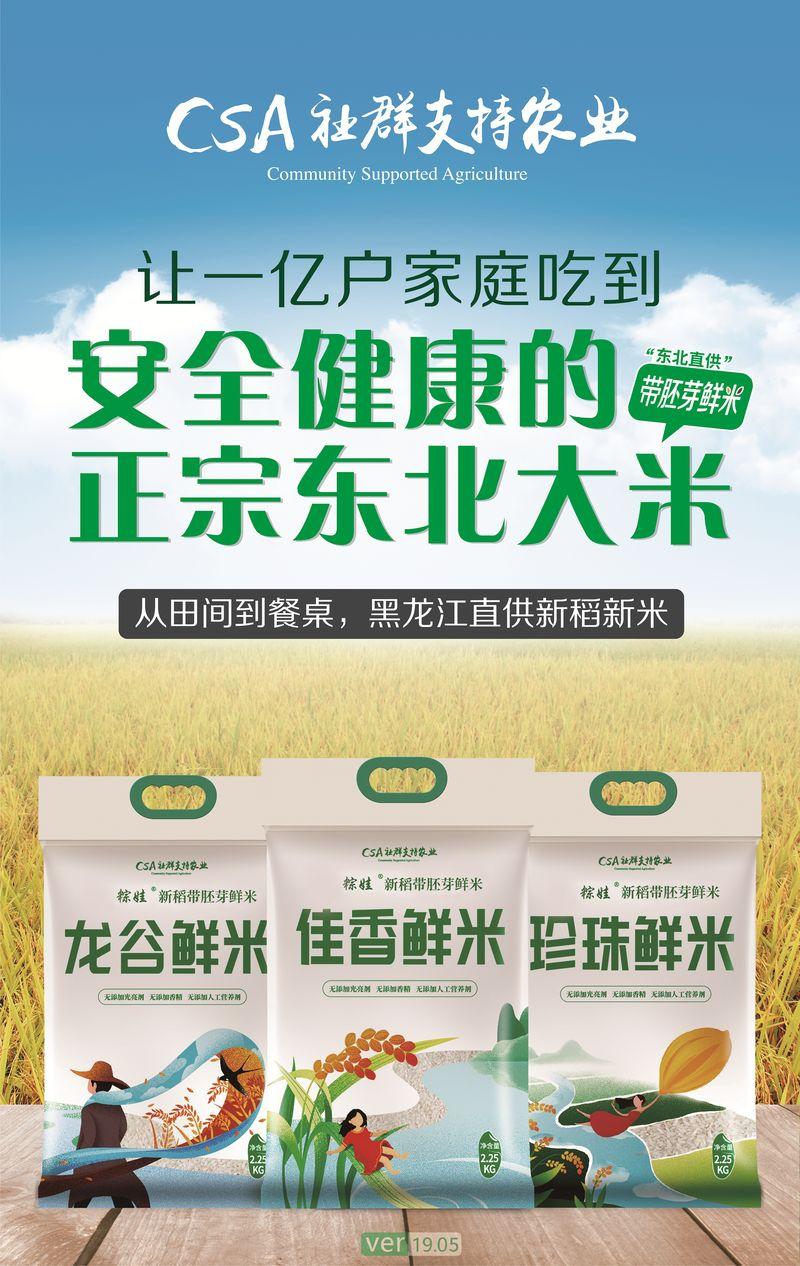 我为什么会去东北包地做CSA胚芽鲜米?