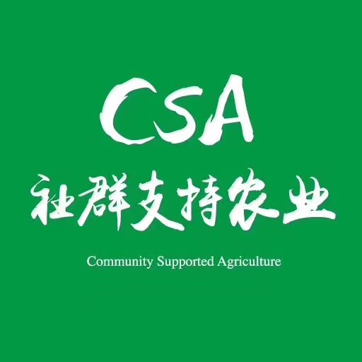 为什么我选择CSA?