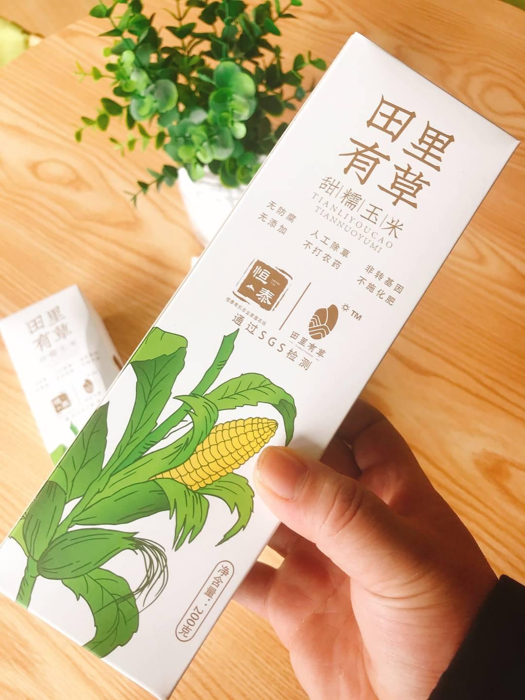 田里有草甜糯玉米-东北直供