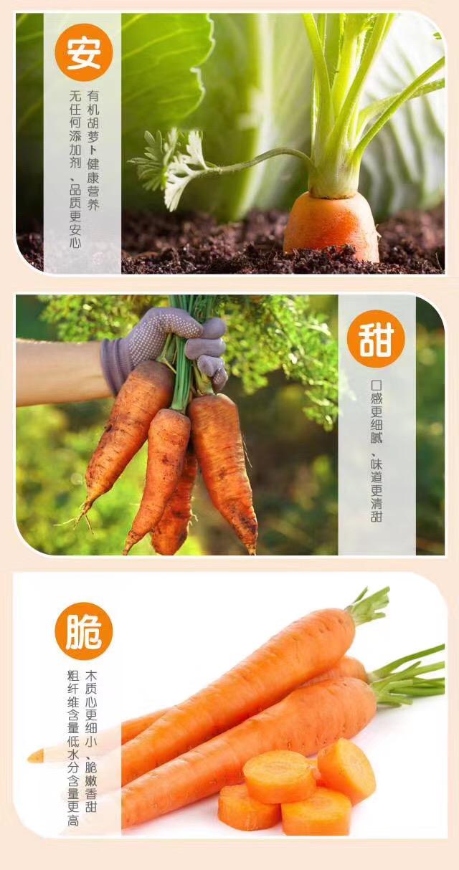 有机胡萝卜