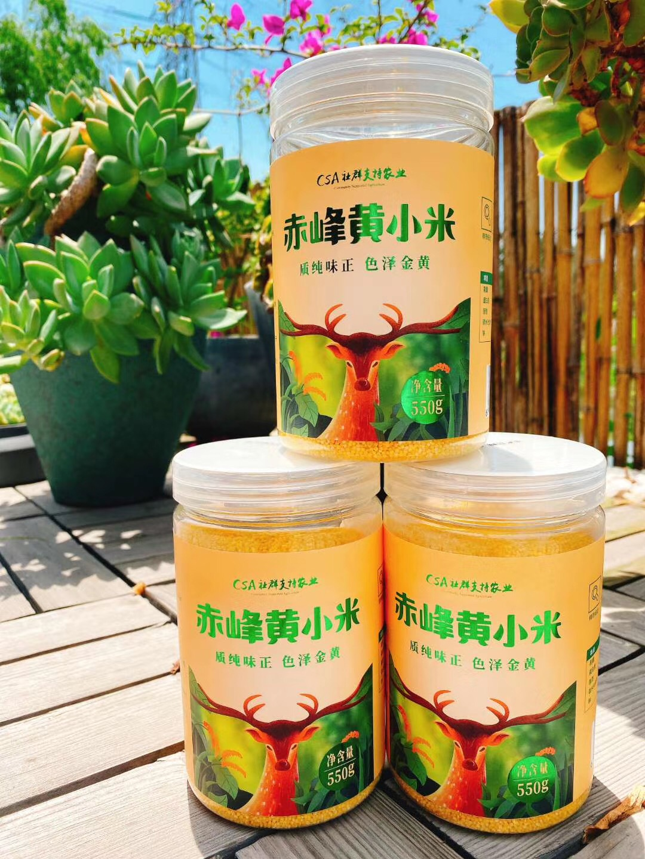 赤峰黄小米-素材