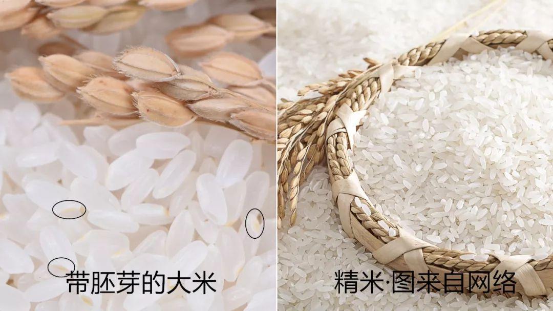 """大米中的""""黄金""""一点"""